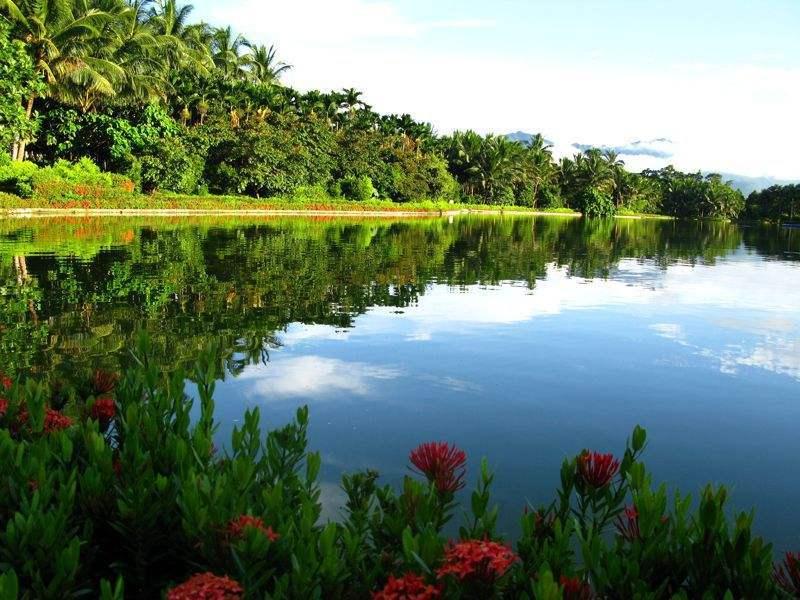 宝安兴隆椰林湾 实景图
