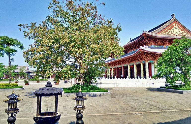 南海之滨 周边配套:永庆寺