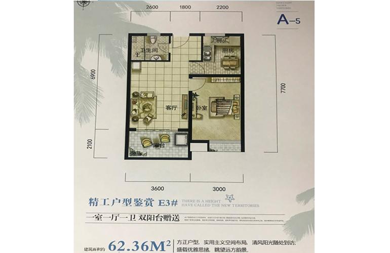 南海之滨 A-5户型 1房1厅1卫1厨 建面62㎡