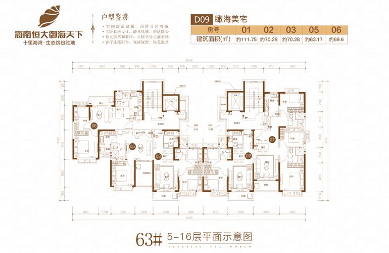 恒大御海天下 63号楼二期D09 5-16层平面图