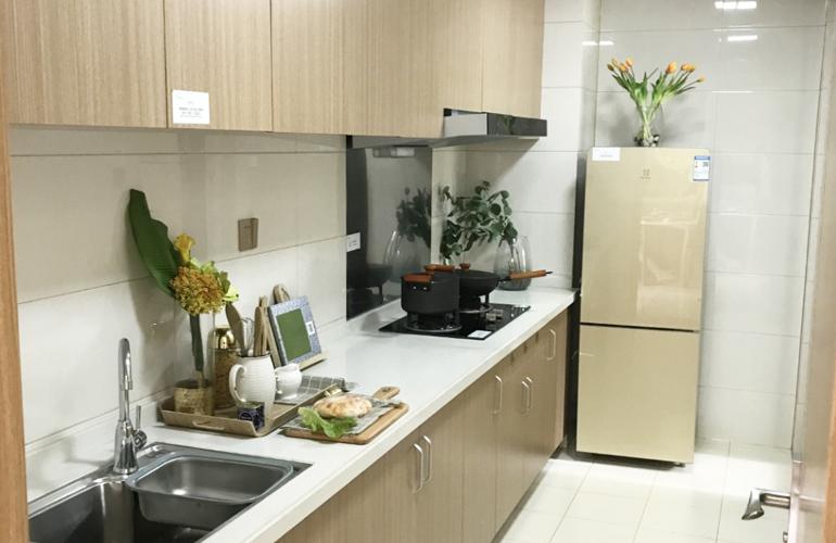 新合鑫观悦城 样板间:厨房