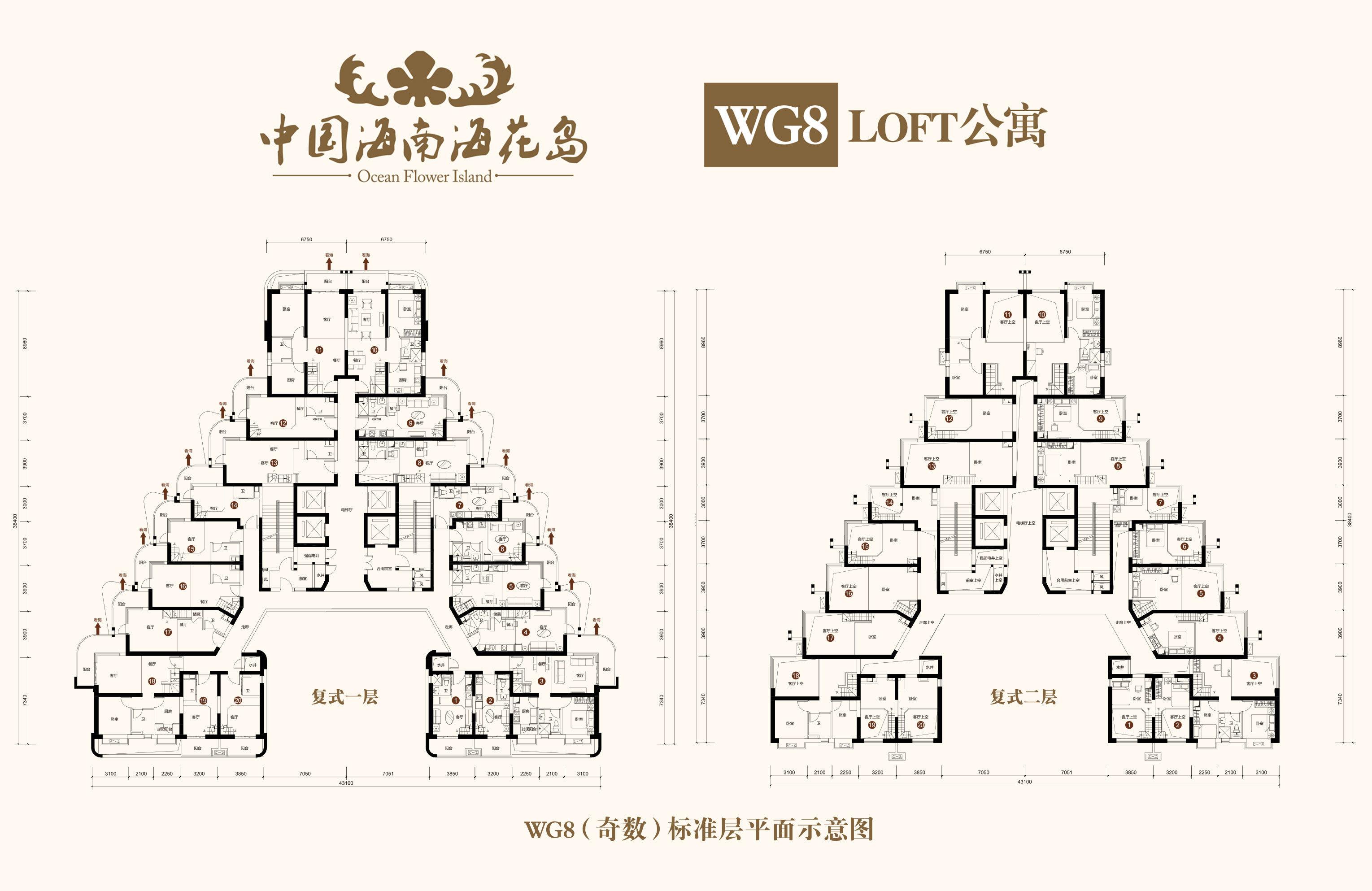 恒大海花岛 WG8(奇数)标准层 建面29-86㎡
