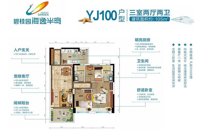 碧桂园海逸半岛 YJ100户型 3室2厅2卫 建面105㎡