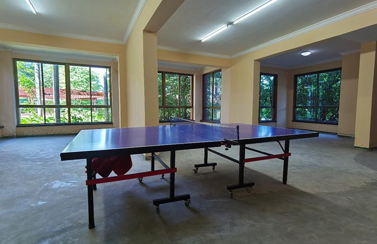 中商海花东岸 乒乓球台