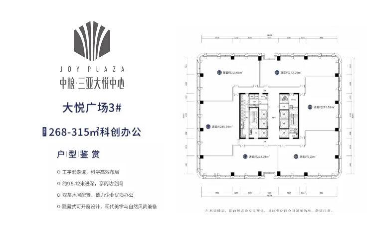 中粮三亚大悦中心 大悦广场3#平面图 建面268-315㎡