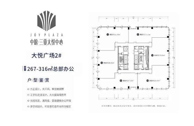 中粮三亚大悦中心 大悦广场2#平面图 建面267-316㎡